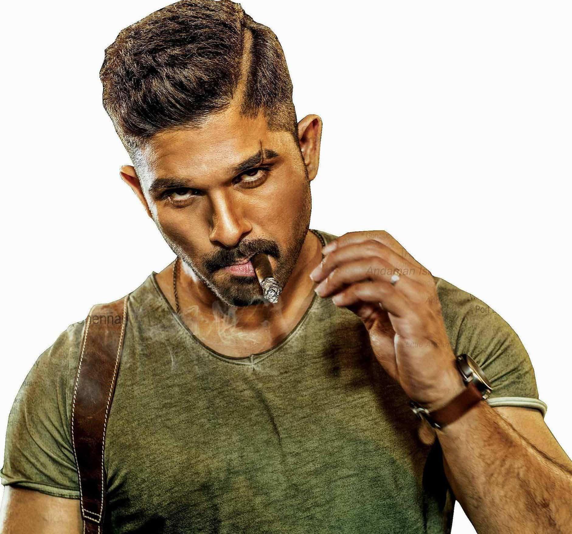 allu arjun stylish star of indian cinema