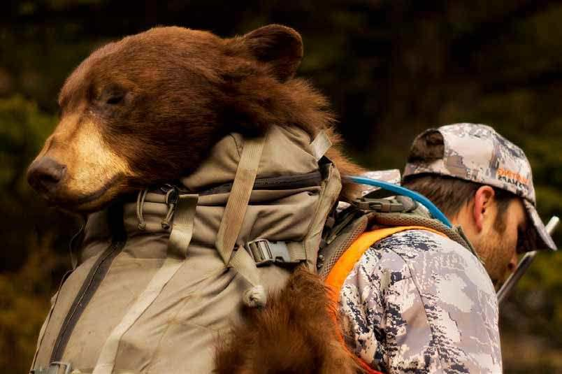 Western Bear Hunting With Brian Strickland